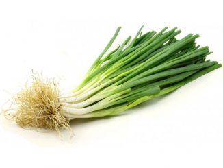 yeşil soğanın faydaları