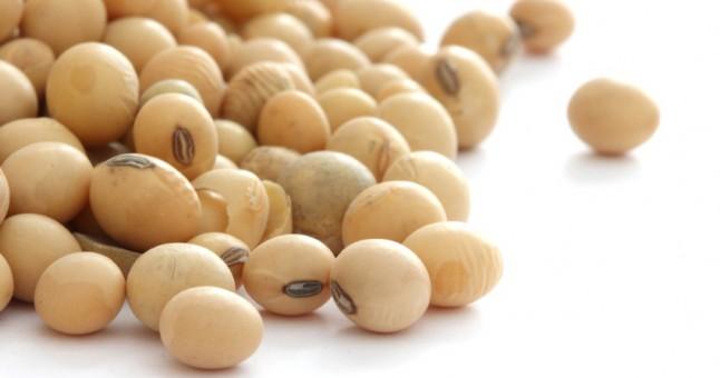 soya fasulyesinin faydaları
